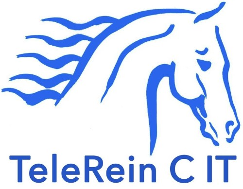 TeleRein C IT - Equestrian tool for horse Rein and contact
